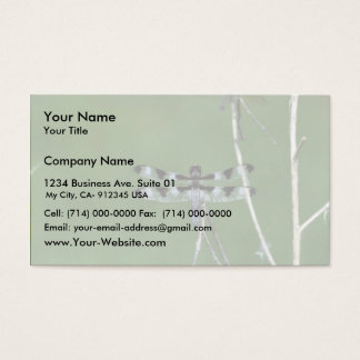 Twelve-Spot Skimmer Business Card