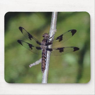 Twelve Spotted Skimmer Dragonfly Mouspad Mouse Pad