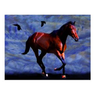 Twilight horse postcard