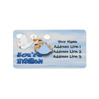 Twin Boys - Stork Baby Shower Address Labels