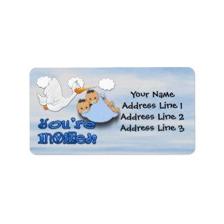 Twin Boys - Stork Baby Shower Address Labels