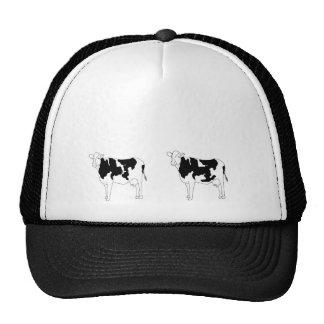 twin cows cap