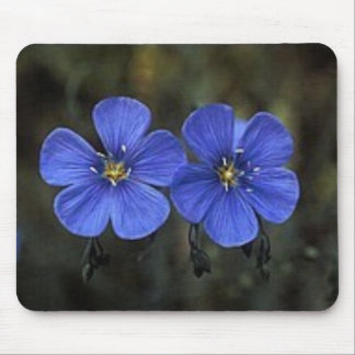 Twin Flowers Mouse Mats