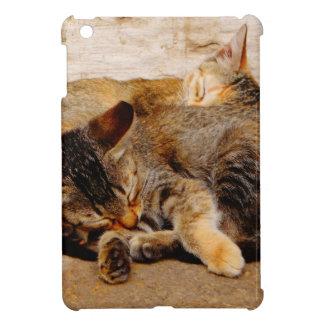 Twin Kittens iPad Mini Case