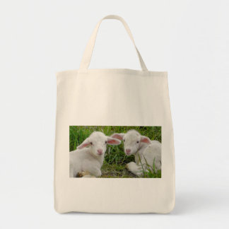 Twin Lamb Baby Animal Thinking Of You Canvas Bags