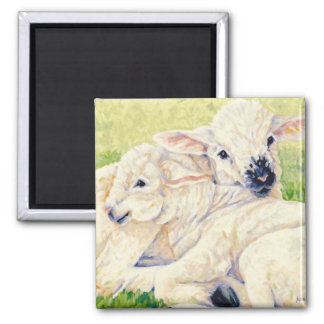 Twin Lambs - Sheep Magnet