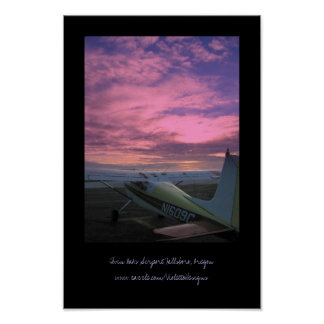 Twin Oaks Airport Poster