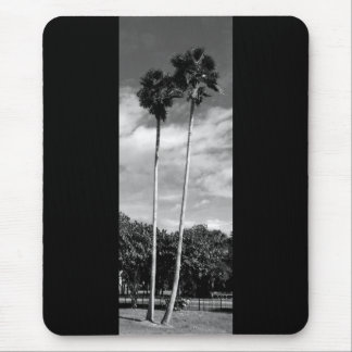 Twin palms mouse pad