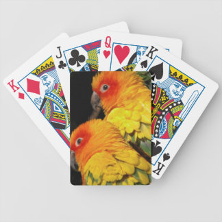 Twin Parrots Bicycle Playing Cards
