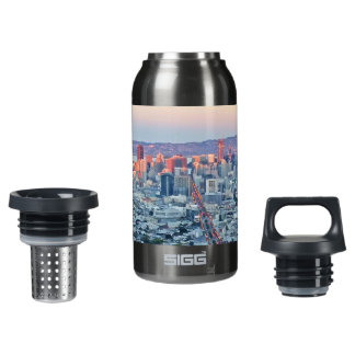 Twin Peaks San Fransisco Insulated Water Bottle