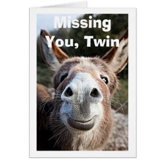 *TWIN** POOR DONKEY MISSES VERY HAPPY ABOUT THAt Card