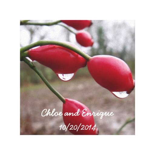 Twin Rose Hips And Rain Personalized Wedding Canvas Prints