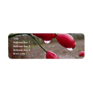 Twin Rose Hips And Rain Personalized Wedding Return Address Label