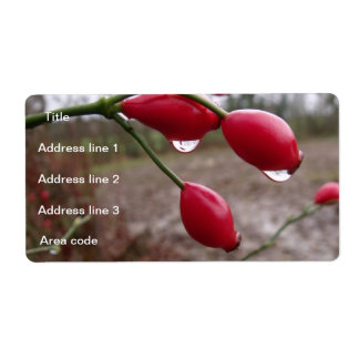 Twin Rose Hips And Rain Personalized Wedding Shipping Label