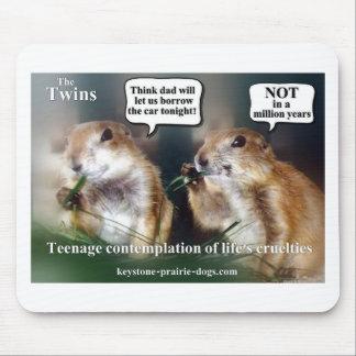 Twin teens mousepads