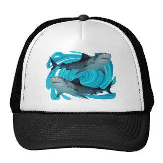 TWIN TIGER SHARKS CAP