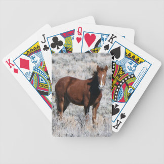 TwinkleStar Bicycle Playing Cards