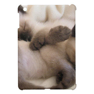Twins Pet Cat Cute Siamese Kitten Cover For The iPad Mini