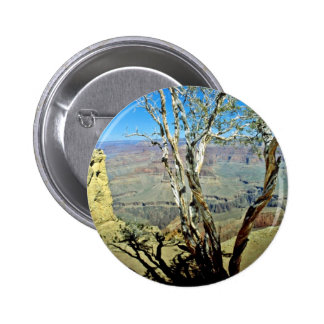 Twisted Tree At Edge Of Grand Canyon Pinback Button