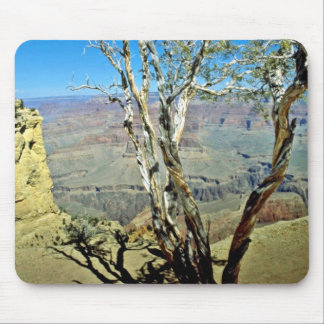 Twisted Tree At Edge Of Grand Canyon Mousepad