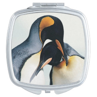 Two affectionate penguins vanity mirror