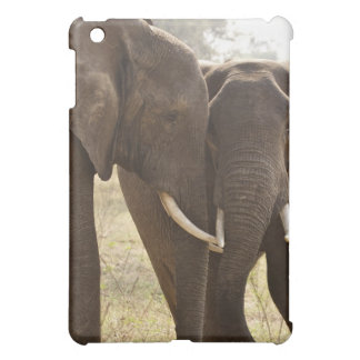 Two African Bush Elephants (Loxodonta Africana) iPad Mini Covers
