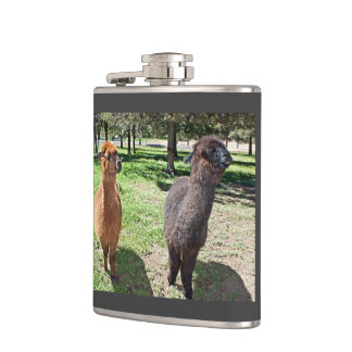 Two Alpacas Take A Stroll On A Sunny Day Hip Flask