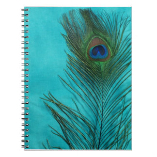 Two Aqua Peacock Feathers Notebooks