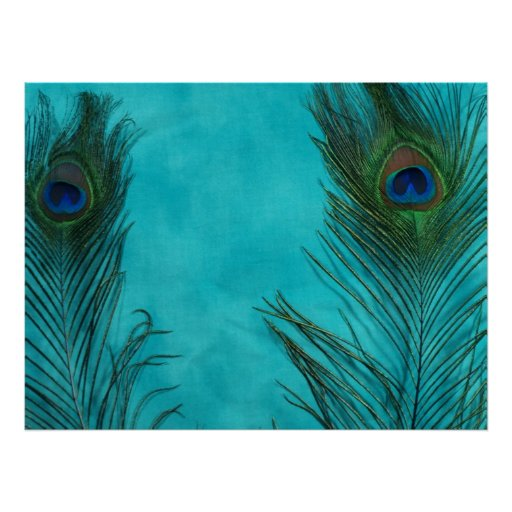 Two Aqua Peacock Feathers Posters