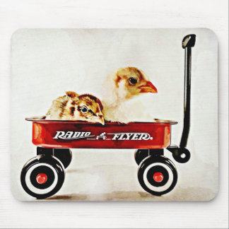 Two Baby Chicks in Red Wagon Mouse Pad