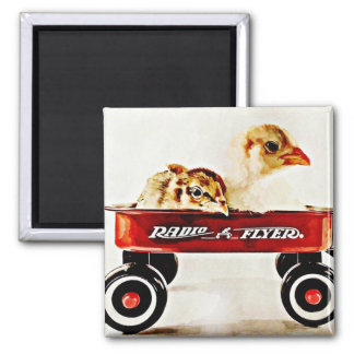 Two Baby Chicks in Red Wagon Square Magnet