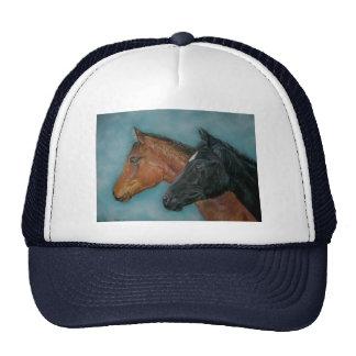 Two baby horses black foal chestnut foal portrait cap