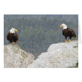 Two Bald Eagles Card