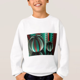 Two Balls reflections in glass balls Sweatshirt