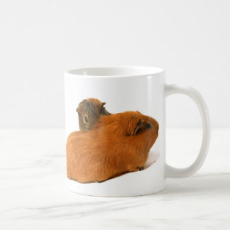 two beautiful guinea pig coffee mug