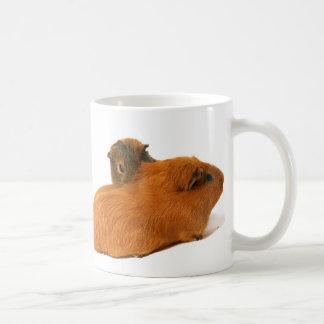 two beautiful guinea pig mugs