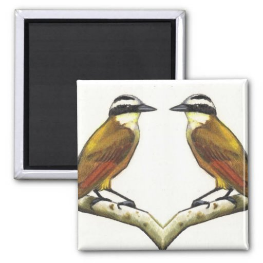 Two Birds Facing: Kiskadees in Color Pencil Magnet