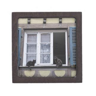 Two Black Cats at Window Premium Trinket Box