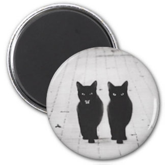 Two Black Cats magnet