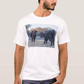 Two black scottish highlanders in frozen meadow T-Shirt