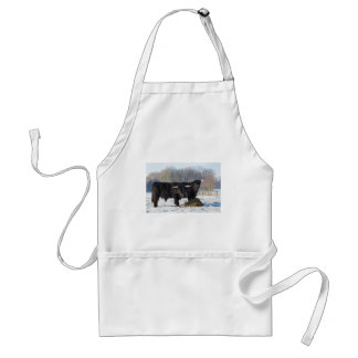 Two black scottish highlanders in winter snow standard apron