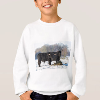 Two black scottish highlanders in winter snow sweatshirt