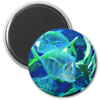 Two Blue and Turquoise Tropical Fish Magnet