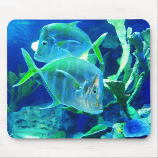 Two Blue Fish Mouse Pad