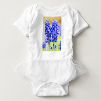 Two blue grape hyacinths in spring baby bodysuit