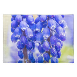 Two blue grape hyacinths in spring place mats