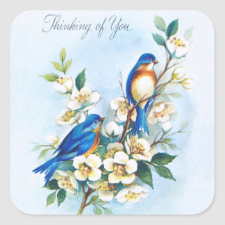 Two Bluebirds Square Sticker