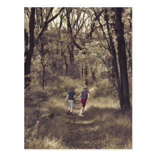Two Boys On a Forest Path Postcard