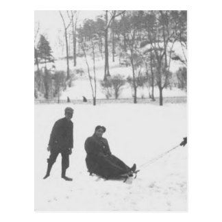 Two Boys Pulling Two Girls on Sleds Postcard