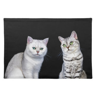 Two british short hair cats on black background placemats